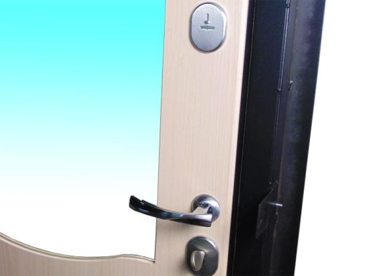 входные металлические двери с зеркалом